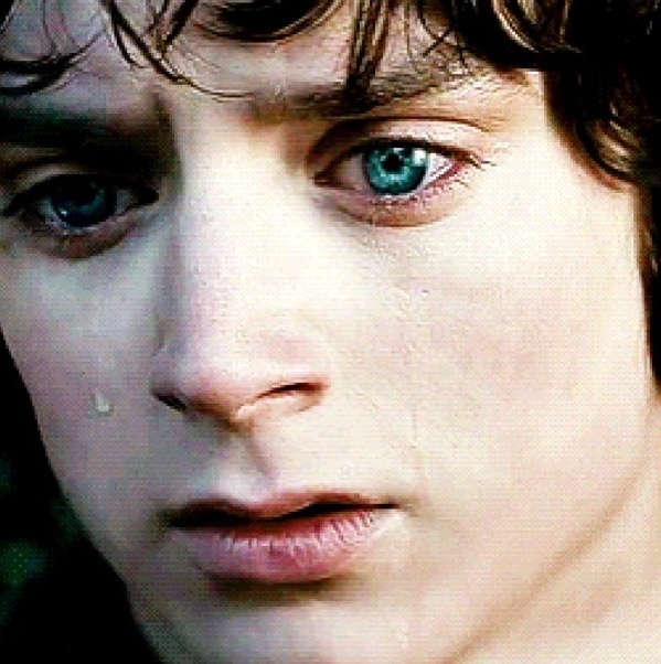 Frodo's sadness. btw those beautiful blue eyes are real, Elijah Wood didn't wear color contacts or have his eyes enhanced.