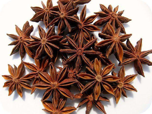 Badián – liečivá hviezdička