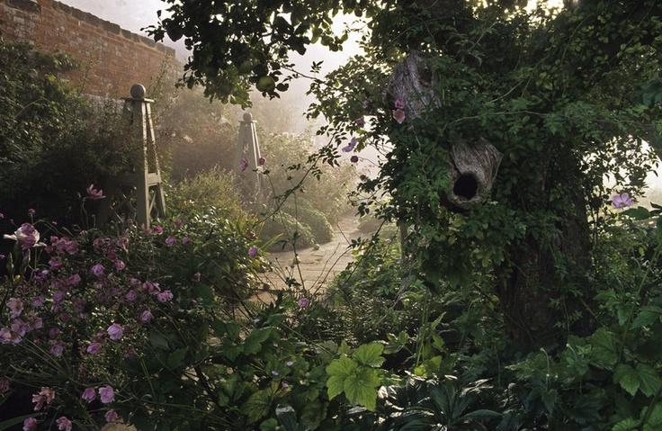 The old apple tree ~ John Glover