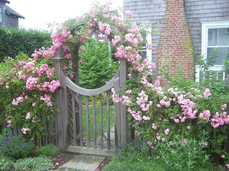 10 Floral Garden Gates In Bold Color - Page 2 of 2 - Garden Lovers Club