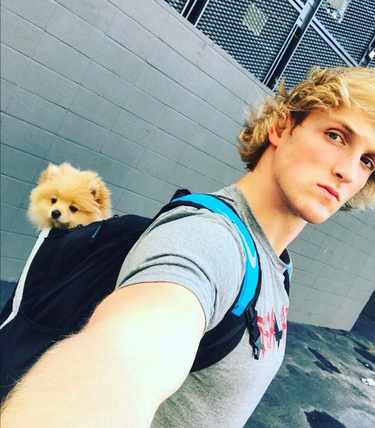 Logan Paul and his puppy Kong