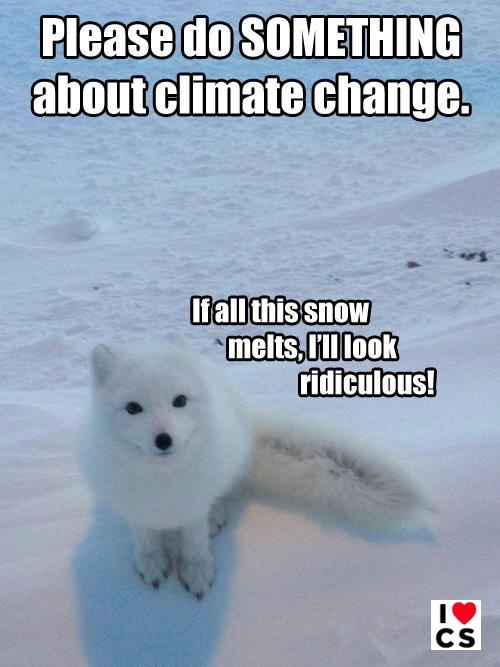 Won't you help a lil' guy out?     Click though to show some FB love to the climate scientists working to understand our atmosphere, despite threats of violence from overzealous deniers!