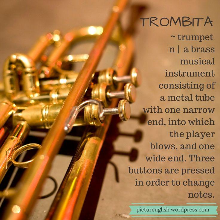 Trumpet / Trombita