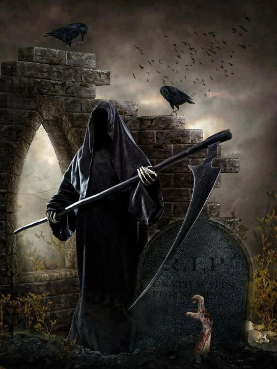 """""""The One, the only Grim Reaper--maybe his face looks dark and scary until we are ready to pass on and then it changes to something kind.??"""" Lucy Slinky (the quotes part) photo provided by David Thomas:"""