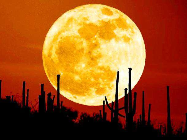 Amazing Supermoon Photos