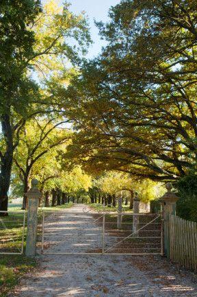 Wombat Park, Daylesford, Victoria.