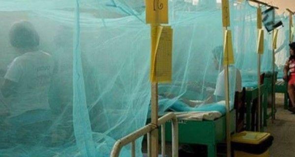 Este año por primera vez cuatro enfermedades son trasmitidas por vectores de forma simultánea. Hubo retrocesos en la erradicación de males que desaparecier