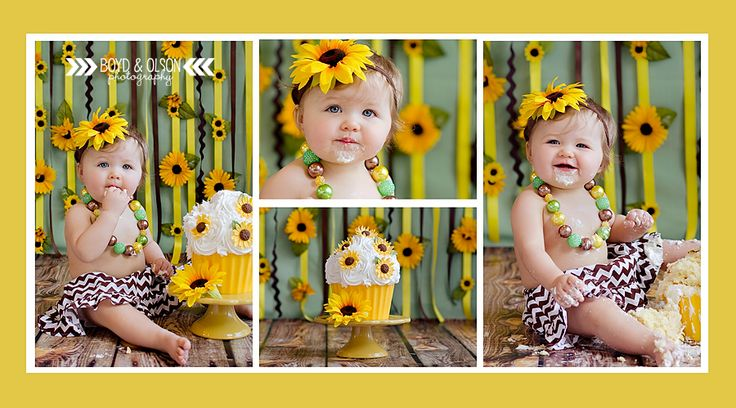 #boydandolsonphotography Smash Cake Photography Sunflower