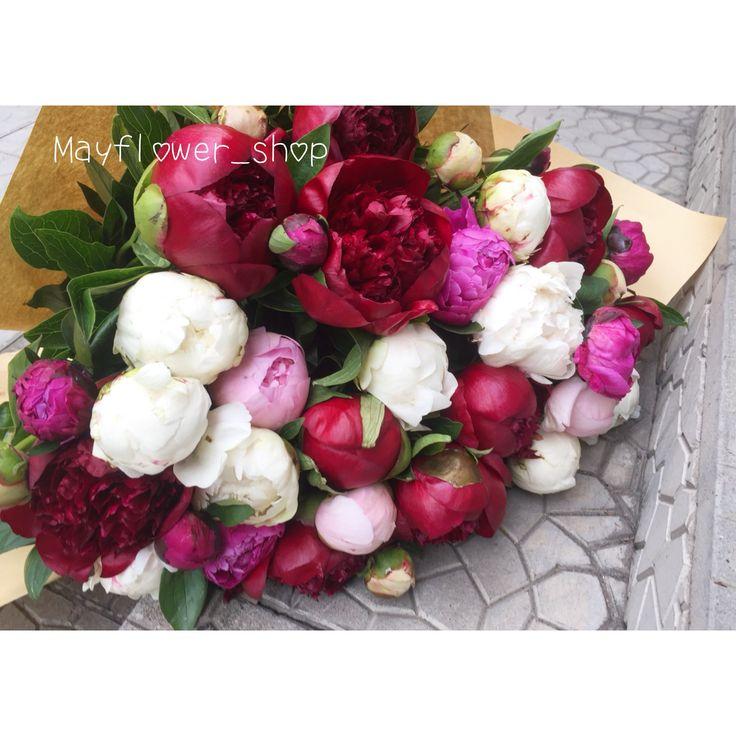 Букет из пионов в Алматы. Бордовые пионы, белые пионы, малиновые пионы, розовые пионы
