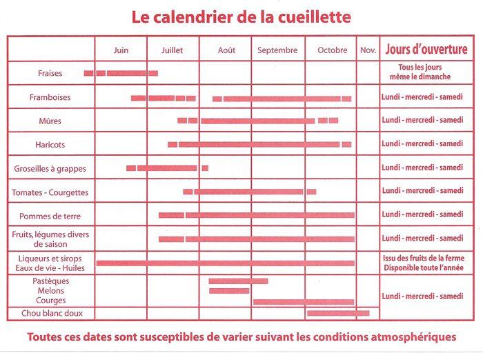 La Fraisière Ferme de Feuillasse - entre juin et octobre
