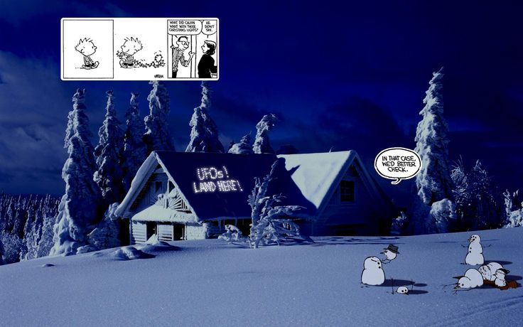 Calvin and Hobbes on Photographic Backgrounds - 04