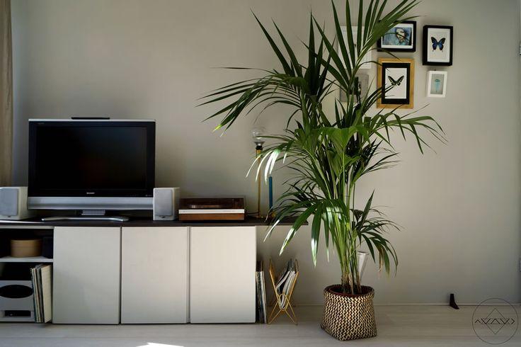 Photography by Ayame styling & design by Iris Floor | www.irisfloor.nl