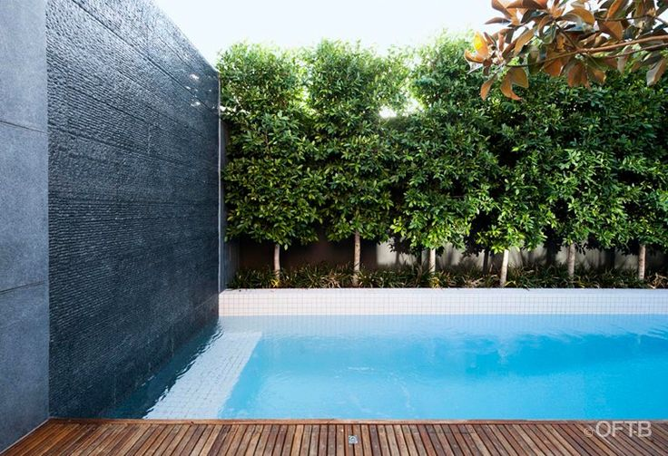 OFTB Melbourne landscaping, pool design & construction project - plunge pool inc water wall, timber pool deck, custom curved glass frameless pool fence, entertaining terrace, built in bbq, garden beds