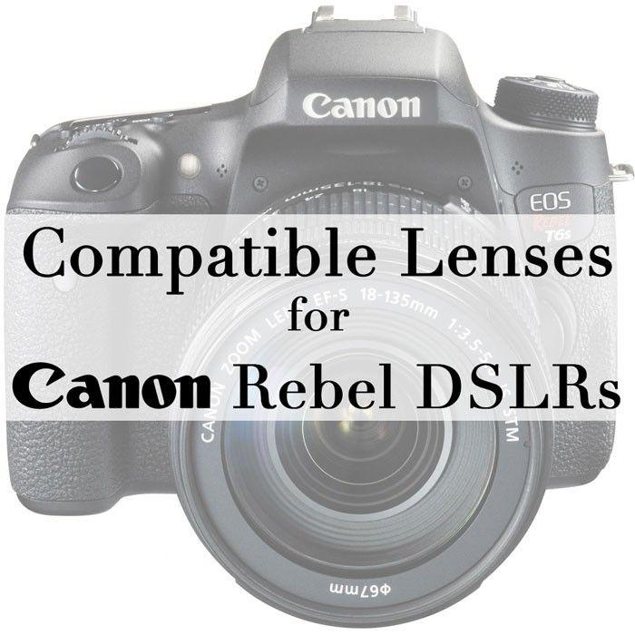 Compatible Lenses for Canon Rebel T3i, T4i, T5i, T6i, T6s & More
