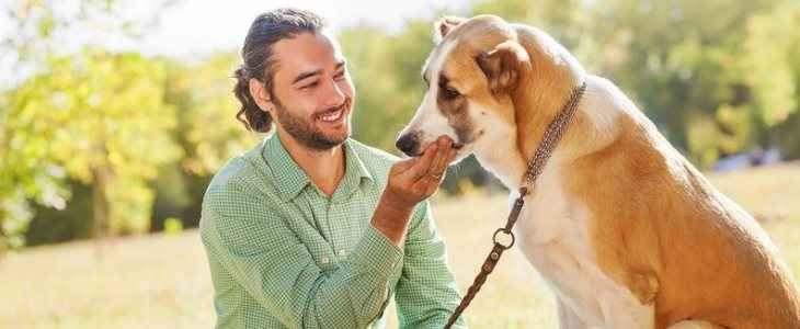 ANIMALI: Cani, cosa capiscono quando ci rivolgiamo a loro Con i cuccioli tendiamo a pronunciare parole melodiose, dolci e senza senso con un tono di voce acuto. Che siano umani o animali poco importa.   E i cani, in particolare, interpretano le nostre att