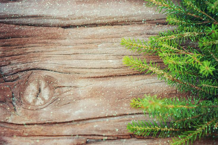 Workshop:Houten Kerstboom maken i.s.m. Praxis Wanneer:Woensdag 14 december van15:00 uur tot 17:00 uur Waar:  /- 77 deelnemende Praxis winkels (worden binnenkort bekend gemaakt) Prijs: €15 inclusief materiaal (als Margriet lezeres krijg je €5 korting en betaal je slechts €10 i.p.v. €15, zie Margriet 50 en 51 voor de kortingscode) Meedoen?Binnenkort komt hier de inschrijflink te…