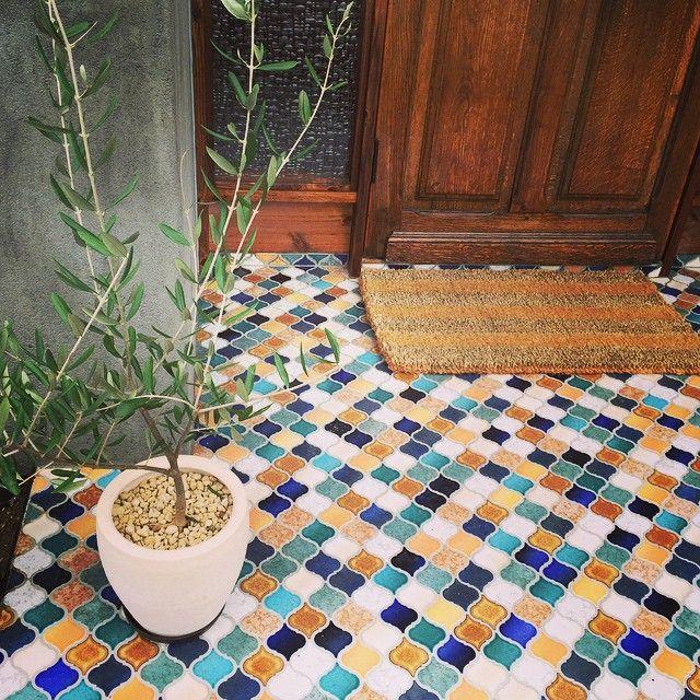 タイル「CORABEL(コラベル)」///// ウチの玄関タイル可愛すぎ…(ღˇ◡ˇ)♥ℒᵒᵛᵉ オリーブも元気に育っておりやす 早く春にならないかな去年作った花壇に 色とりどりのお花を植えたいな