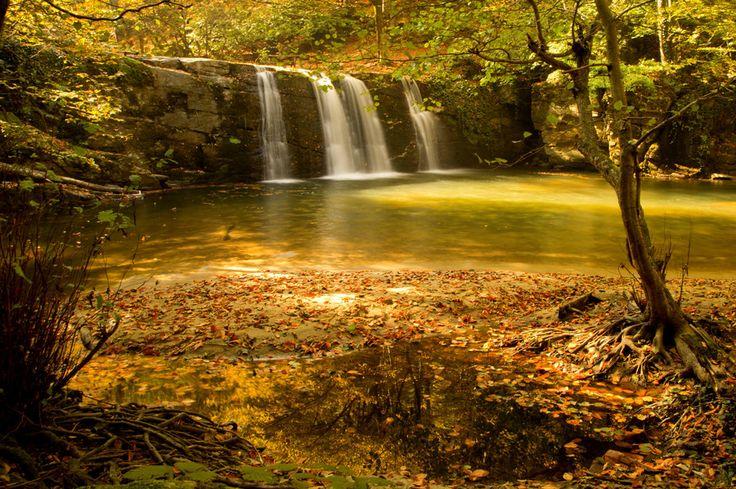Stunning Fall - Turkey, by Muzaffer Gökkaya on 500px