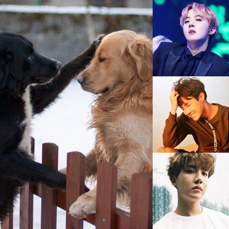 ChineseZodiac&KPOP // Dog // JHope of BTS