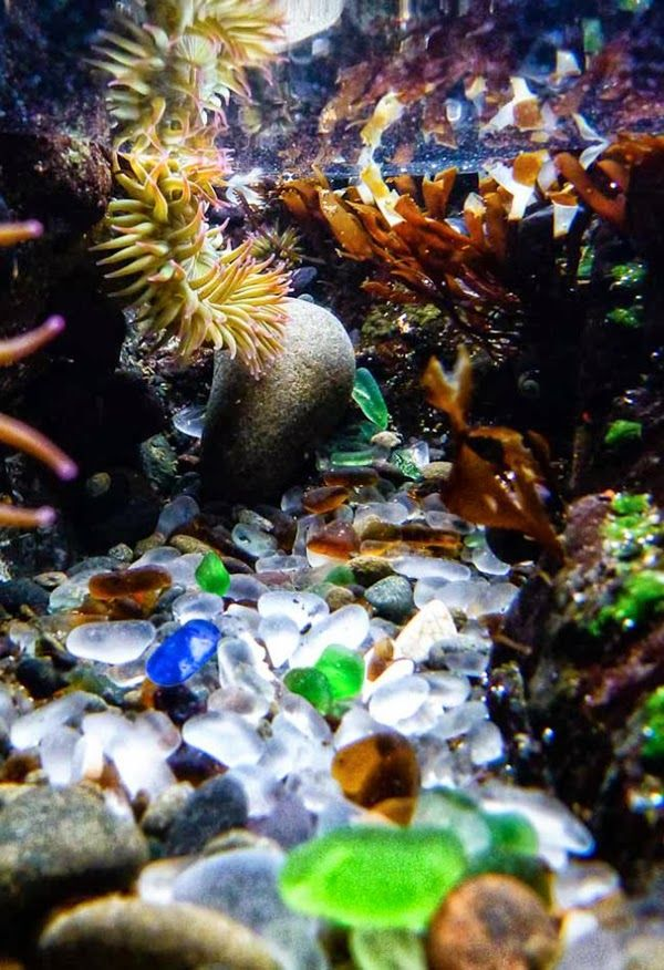 This image shows a glass beach underwater. I like how capturing this image like many others, i like the bright colours and how calming the photo makes me feel.