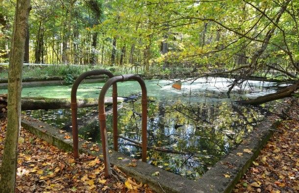 17 best images about abandoned pools on pinterest - University of louisville swimming pool ...