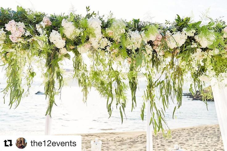 #Repost @the12events (@get_repost)  Green Green simple and Clean with a touch of cream. #beachwedding #the12events #sotiristsakanikas #the12eventsneverstops #greenery #weddingplanning #floralart #mykonos #madewithlove #madeingreece #realweddings #beachdecor #decoration #weddingflowers #luxury #weddingstyling #weddingconcept #getmarriedingreece  @sotiris_tsakanikas