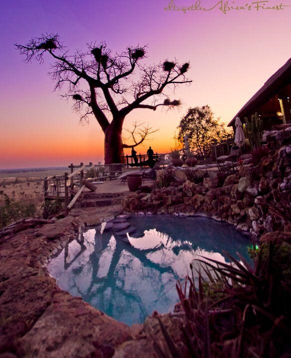 MAGNIFICENT baobab sunrise today at Ngoma Safari Lodge - Chobe National Park, Botswana!!