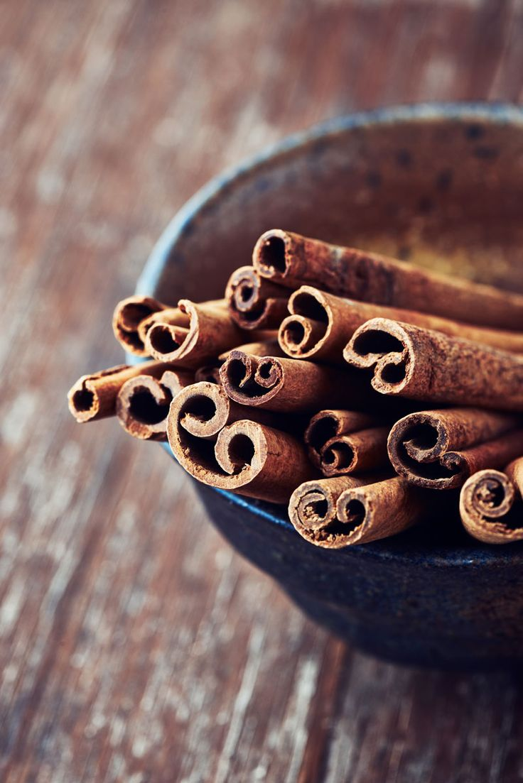 Cinnamon is well known for its culinary uses, yet it is hardly ever grown in ordinary home settings. Learn how to care for this surprisingly easy-to-grow tropical herb. | Mother Earth Living