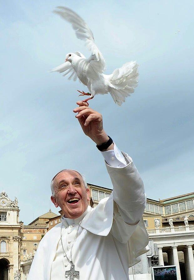 Papa Francisco abençoado pelo Divino Espirito            Santo