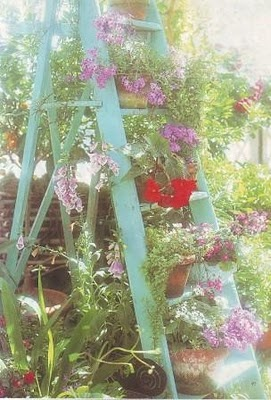 A simple freshly painted ladder can provide instant additional vertical space for small gardens. To ensure pots stay put on narrow rungs, drill a long screw up through the underside of the rung so it protrudes up at least 5cm/2in. Sit the pot's drainage hole over the screw tip to secure it into place & plant away! | The Micro Gardener