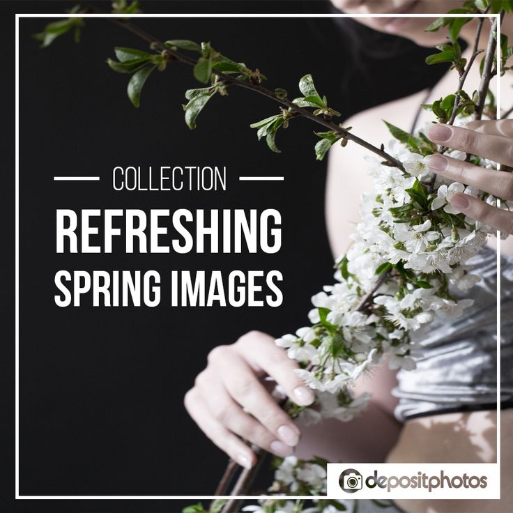 You can be sure that the biggest question hanging over the people in the northern hemisphere is 'When will winter finally end?'.  Get people excited with our selection of images about nature in bloom, the lovely spring palette and only the most uplifting images: http://links.dep.ph/xgFp