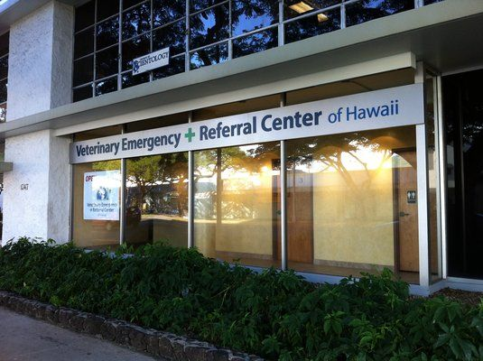 Veterinary Emergency + Referral Center of Hawaii 1347 Kapiolani Blvd Ste 103 Honolulu, HI 96814 Neighborhood: Ala Moana (808) 735-7735 verchawaii.com Hours: Mon-Sun 12 am - 12 am