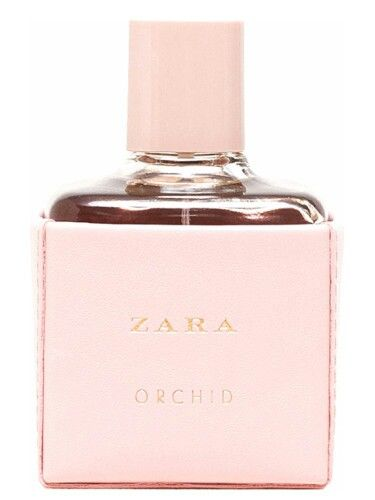 Zara Orchid 2016 Was Launched In 2016 The Fragrance Features