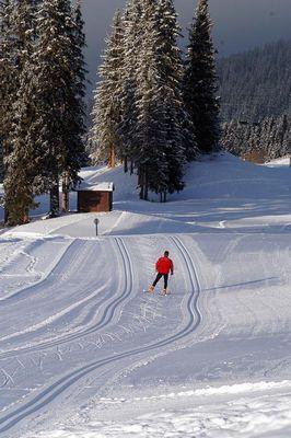 Méribel - Savoie - France - Ski de fond, skating, nordique Méribel - 3 Vallées (Alpes, Savoie)