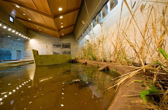 VISIT GREECE| The Environmental Museum of Stymphalia #museums #art #culture  photo: cross-section of the lake in the Museum's interior ©Θανάσης Κοττάς - Φωτογραφικό Αρχείο ΠΙΟΠ