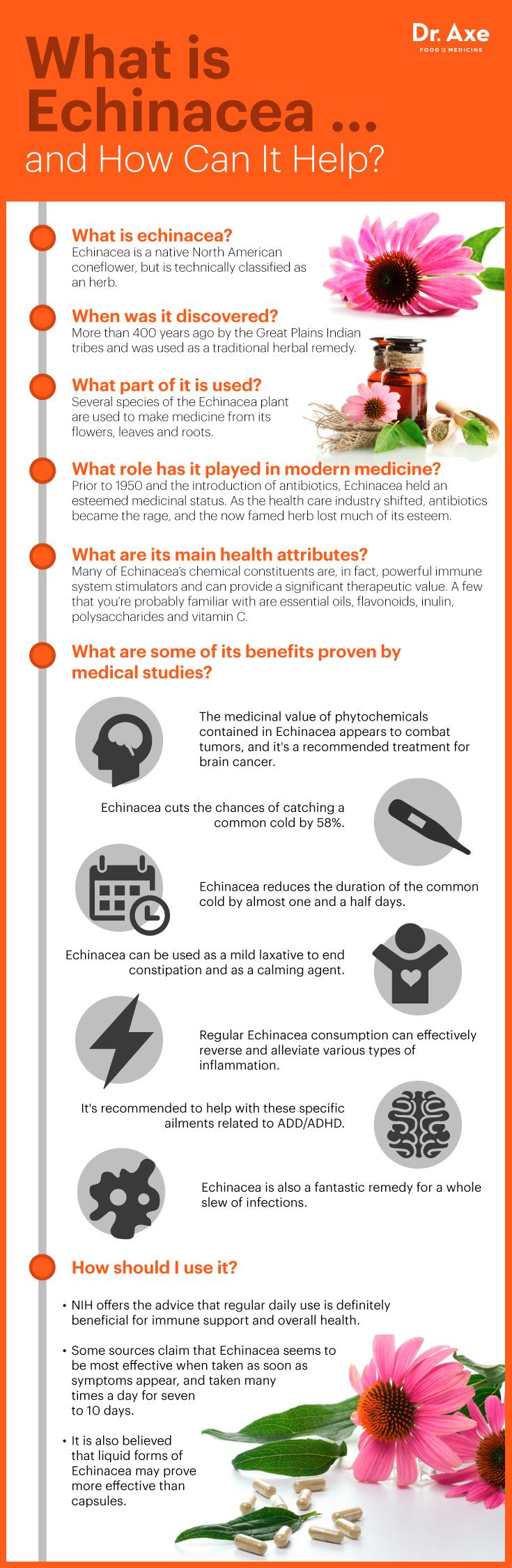 Echinacea Benefits infographic http://www.draxe.com #health #holistic #natural