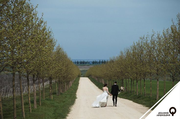 Осенняя свадебная фотосессия в долине Лефкадия отличается от других. Яркие краски, причудливые цветовые переходы, хрупкая красота засыпающей на зиму природы — запечатлеть всё это может только истинный художник. Профессиональные фотографы и видеооператоры из долины Лефкадия обязательно сделают самые важные кадры в жизни каждой пары так, как надо. Будьте уверены: такие первые семейные фотографии будут еще долгие годы радовать вас и ваших близких