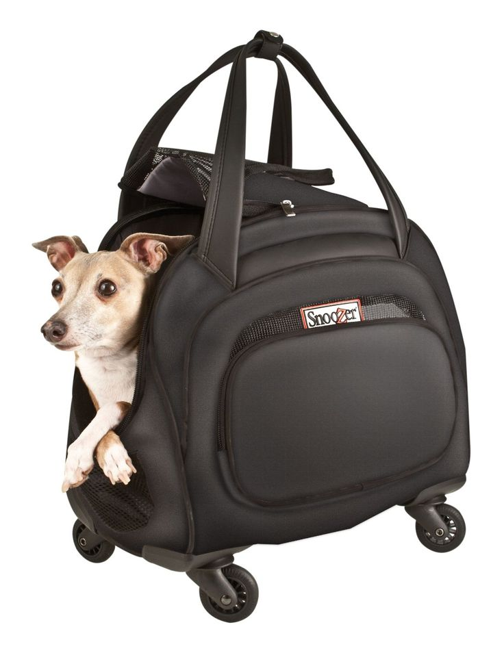 96f9354e48 Dog carrier with wheels / Actual Store Deals