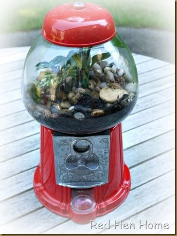 12 best gum ball machine images on pinterest bubble gum for Gumball fish tank