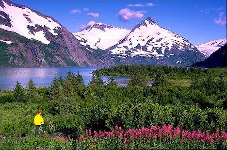 gorgeous scenery