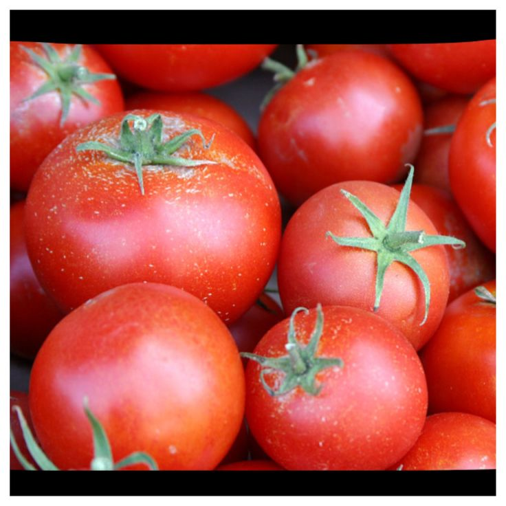Tomatoes were another item traded on the Columbian Exchange. They were used for food. Today we use tomatoes for a lot of the food we eat. We put them in salads, dice them for soups, purée for pizza, or jut eat them plain. Tomatoes are commonly used everyday in the United States.