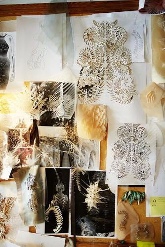 Iris van Herpen's mood board in her Amsterdam office is filled with feathers and skeletal structures that likely help her imagine her 3-D pr...