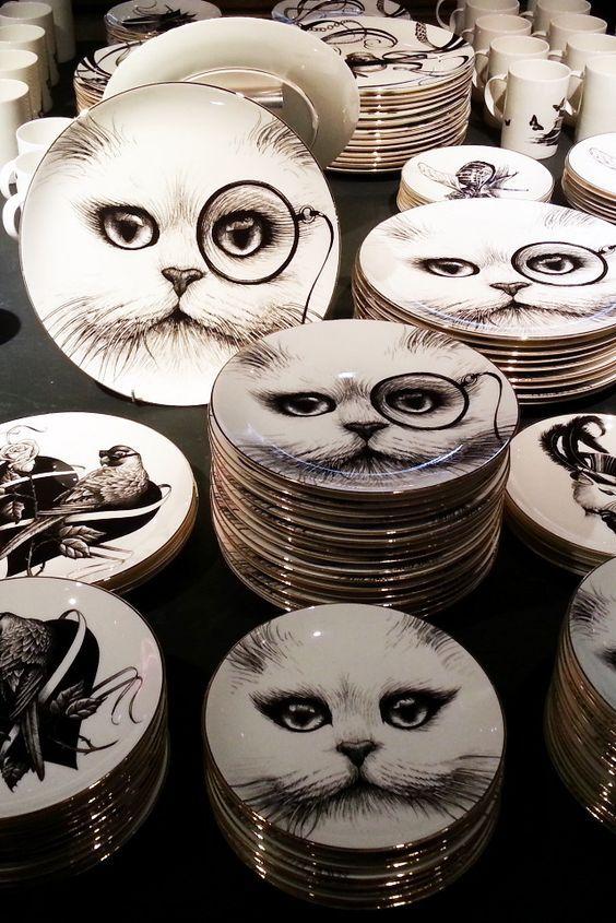 cat plates: