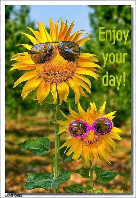 Enjoy!...:)