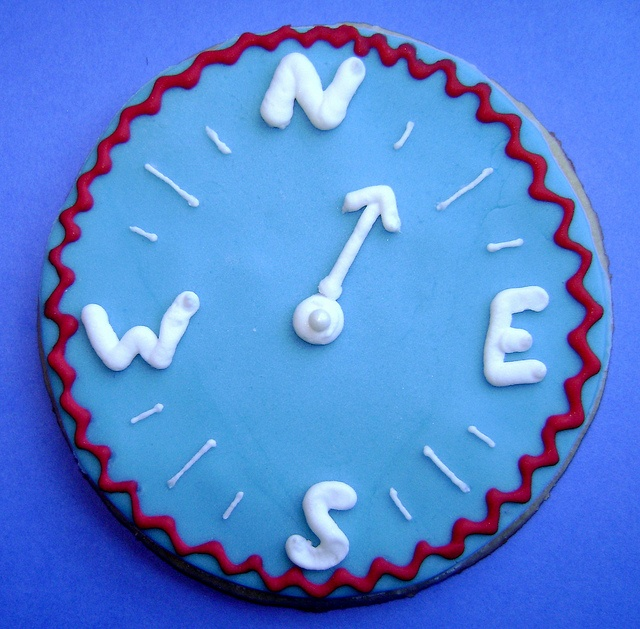 Compass Cookie by ShellyCakes, via Flickr