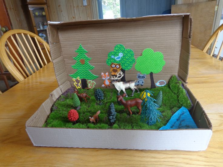 A Forest Diorama Craft Project That\u0027s Fun for the Family school