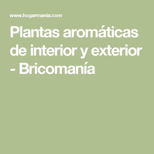 M s de 1000 ideas sobre hierbas interiores en pinterest - Plantas aromaticas interior ...