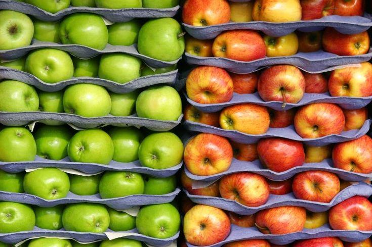 Мы вам покажем, где яблоки зимуют! Пять способов хранения урожая