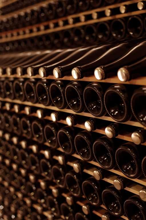 Expo Veneto: Organic wines in the old cellar of 1427, visiting the Castle and its park - Events