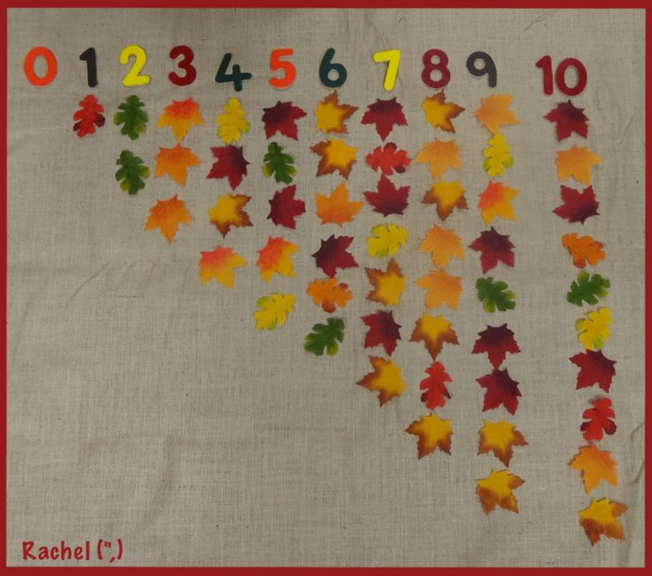 Leaf Counting (from Stimulating Learning with Rachel)